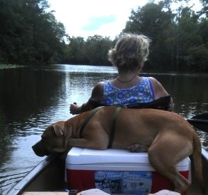 1 Sinbad canoe